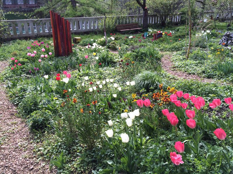 Der Jahreszeiten-Wildgarten im Frühling (im Hintergrund Kunst-objekte von Gianni Vasari, Biel)