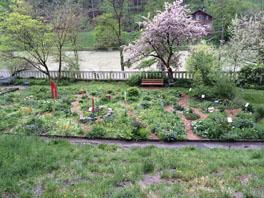 Jahreszeiten-Wildgarten