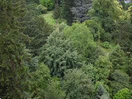 Arboretum Sommer