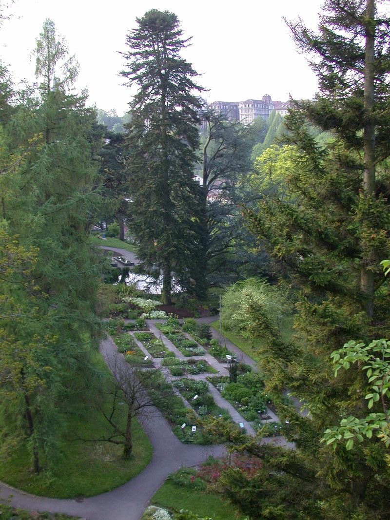 Der Heilpflanzengarten und der Teich von der Lorrainebrücke aus gesehen